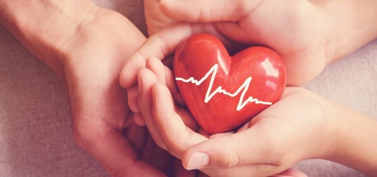 linhaca saude cardiovascular