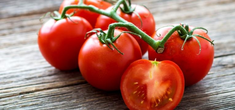 alimentos geneticamente modificados tomates em rama