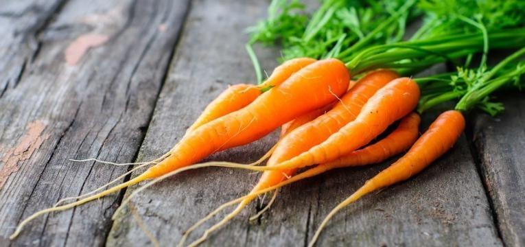 cenouras com raiz
