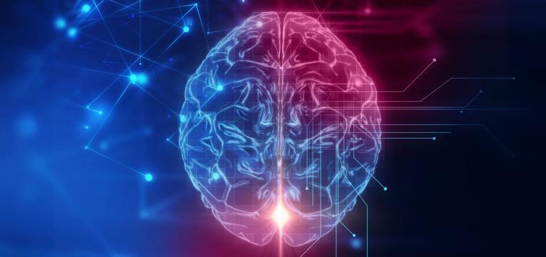 o que acontece ao nosso corpo quando deixamos de treinar e neural