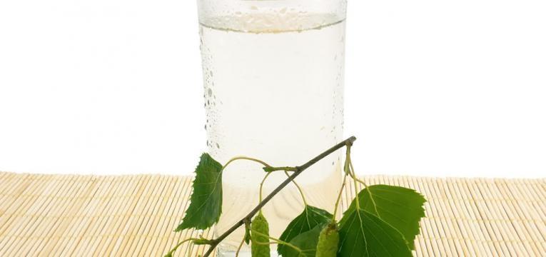 agua de betula