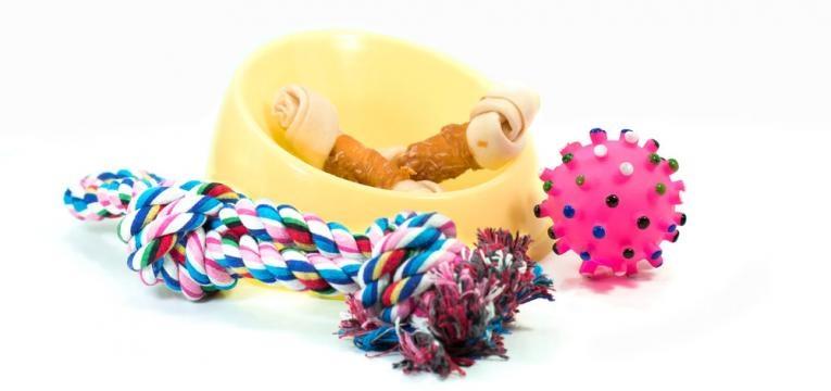 brinquedos e snacks para animais