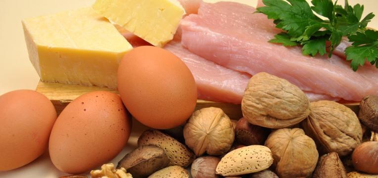 dicas para emagrecer e fonte proteicas