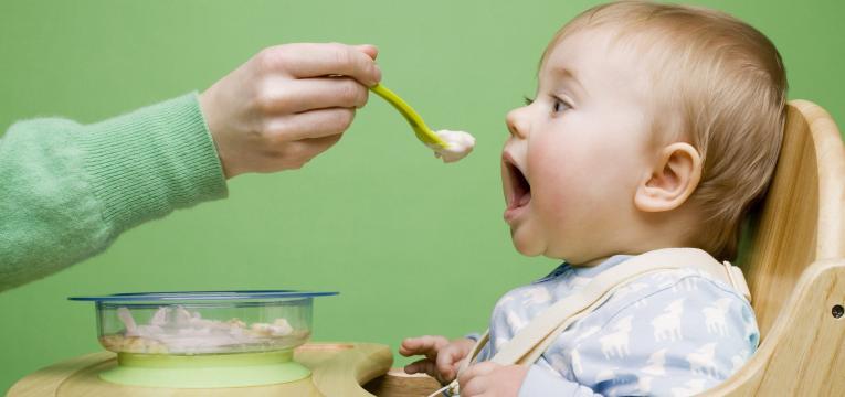 alimentação do bebé aos 8 meses