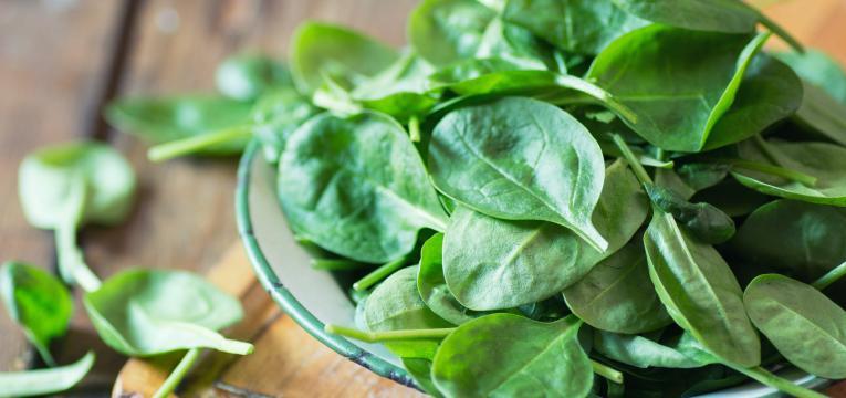 alimentos com ferro de origem vegetal