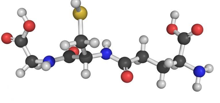 antioxidantes prejudiciais a saude