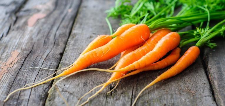 molho de cenouras