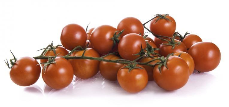 tomate cherry em fundo branco