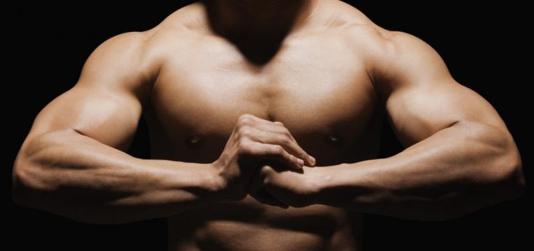 construcao do musculo
