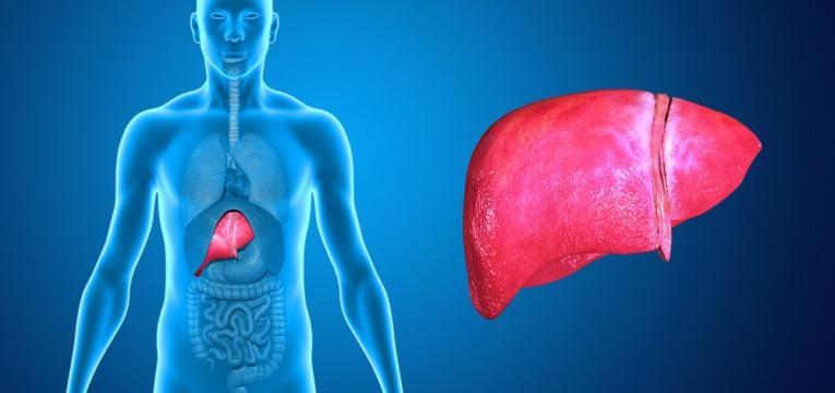 varizes esofagicas e cirrose hepatica