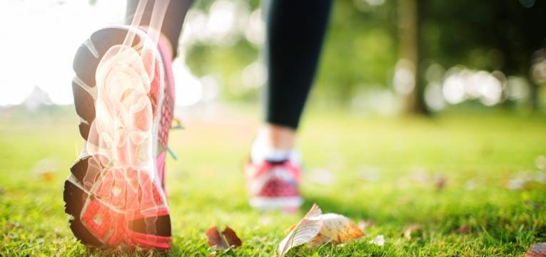 mitos sobre o consumo de proteina e risco de osteoporose