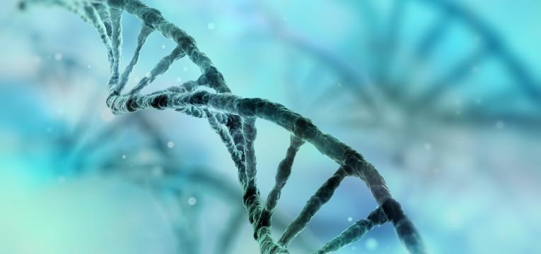 fatores hereditarios e esquizofrenia