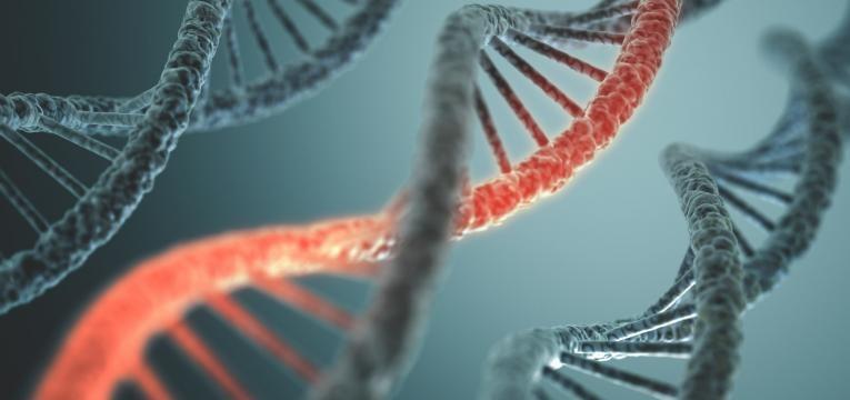 estrutura de DNA