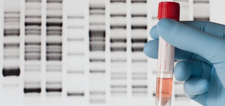 colheita de material genetico