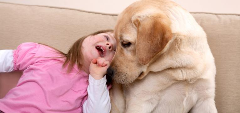 terapeutica assisitida por animais