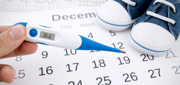 calendário de ovulação testes