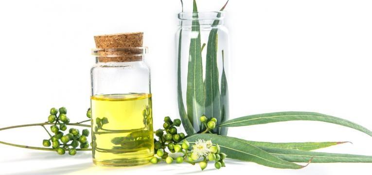 Tratamento com oleos essenciais de eucalipto