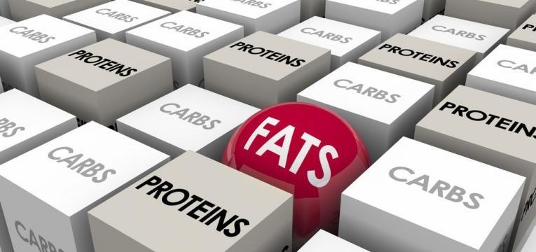 proteina hidratos de carbono e gordura