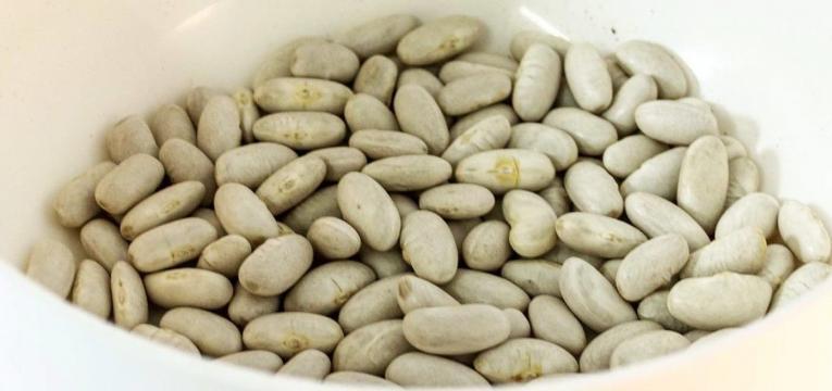 feijao e lentilhas e alimentos de dificil digestao