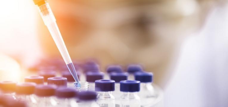 investigadores a procura de tratamento