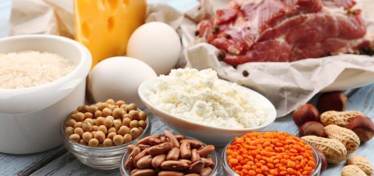 varios tipos de proteina