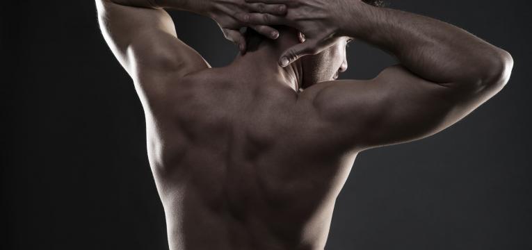 aumento da massa muscular e astaxantina