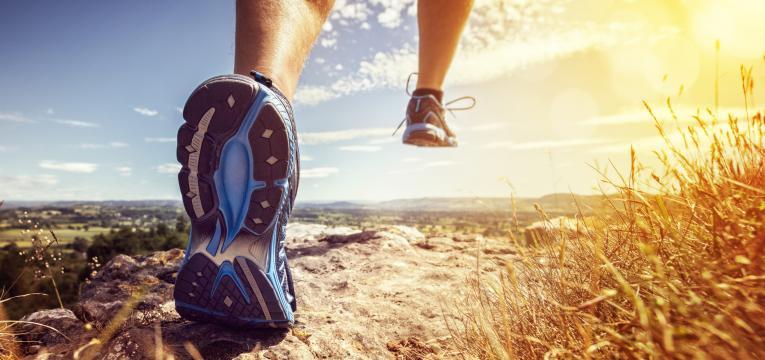 desporto e acido alfa lipoico