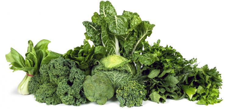 hortícolas como alimentos que não devem ser congelados