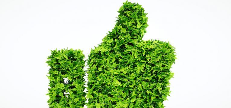 flexitarianismo e meio ambiente