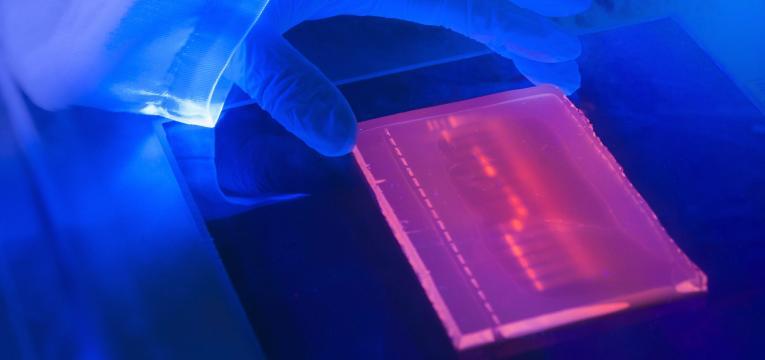 marcador genetico