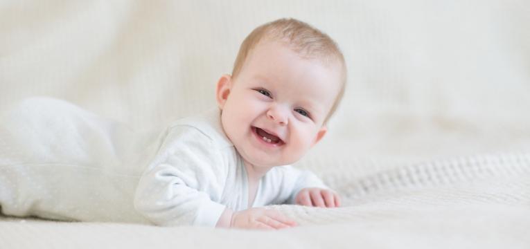 dentes a nascer como surgem