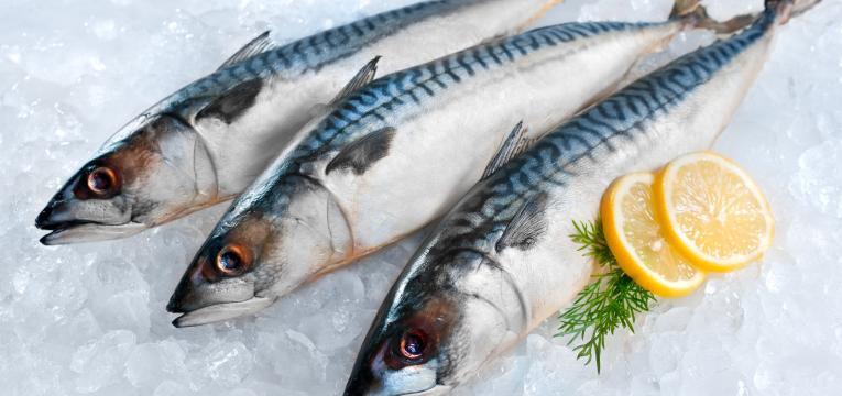 peixe e dieta kosher