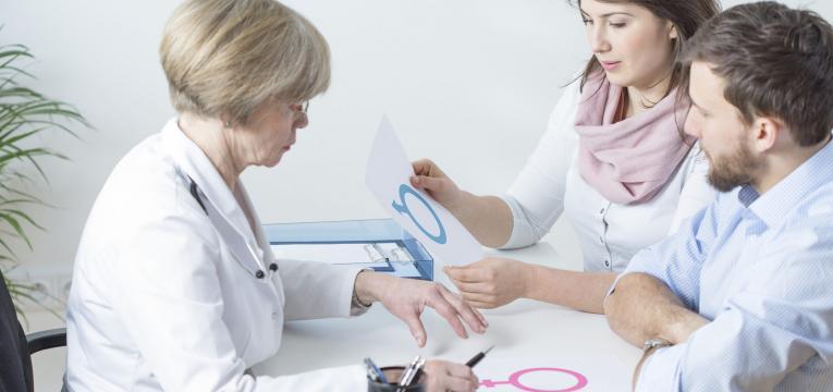 inseminação artificial