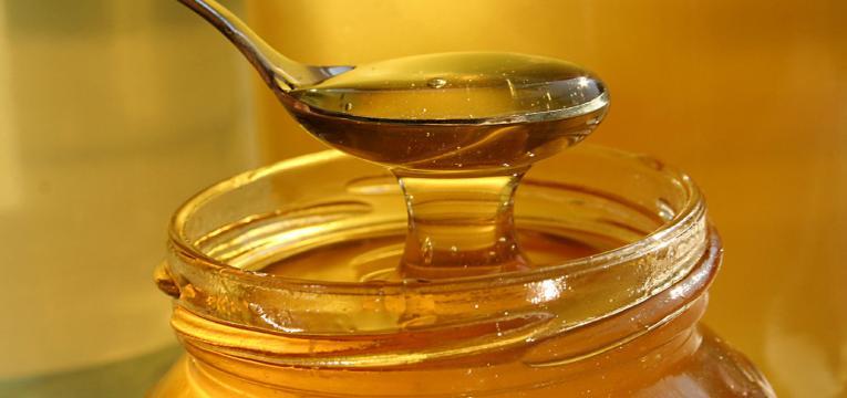 mel e alimentos proibidos antes do primeiro ano de vida
