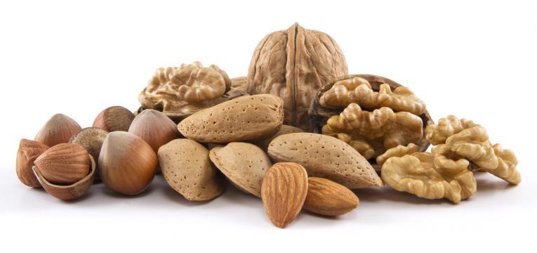 alimentos que estao na moda e frutos oleoginosos