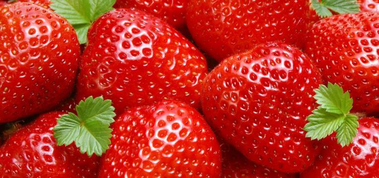 morangos e quando introduzir fruta na alimentação do bebé