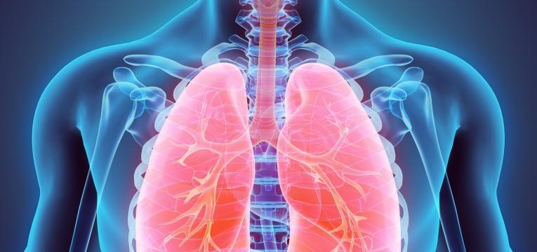 o que acontece ao nosso corpo quando deixamos de treinar e respiratorio
