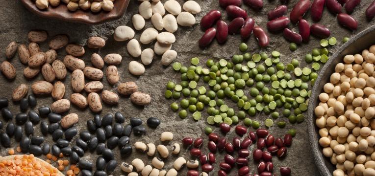 alimentos ricos em proteina e leguminosas