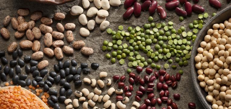 Alimentos fornecedores de proteina vegetal