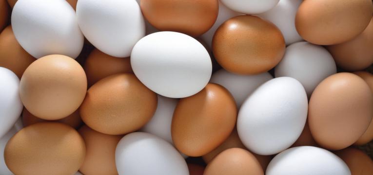 ovos como alimentos que não devem ser congelados