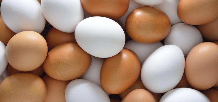ovo e alimentos para treinar