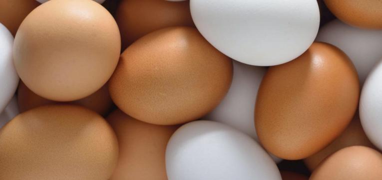 ovos de duas qualidades