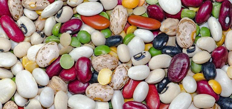 variedade de leguminosas