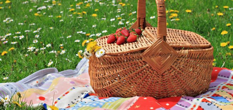piquenique ao ar livre em atividades para o dia da mãe