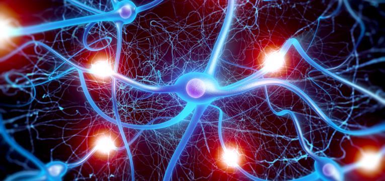 prevencao de doencas neuro degenerativas