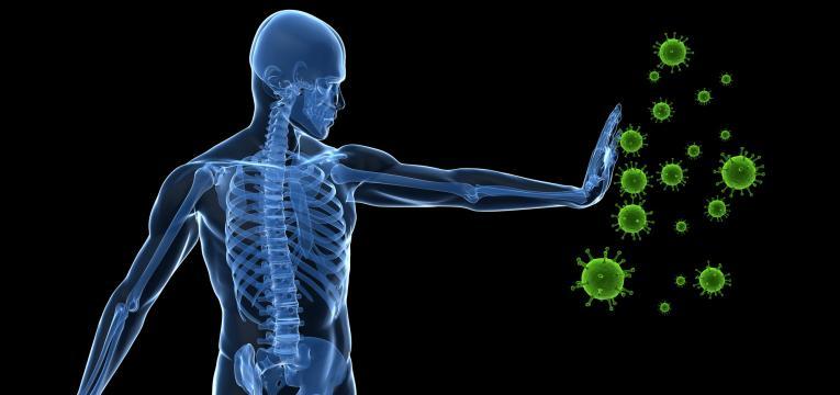 reforço da imunidade