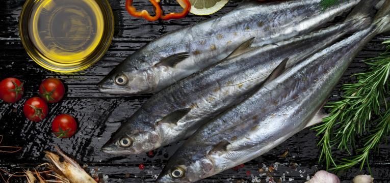 sarda e peixe gordo