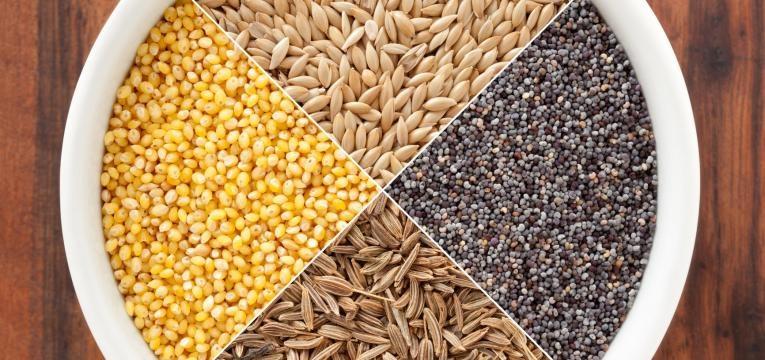 alimentos que estao na moda e sementes