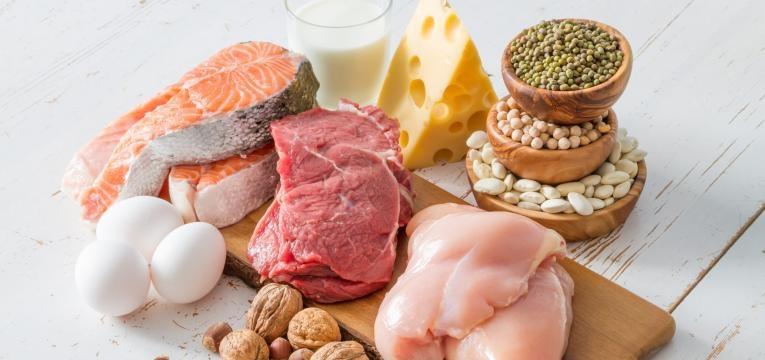 varios alimentos ricos em proteina