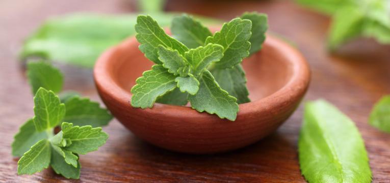 stevia em xaropes substitutos de açúcar